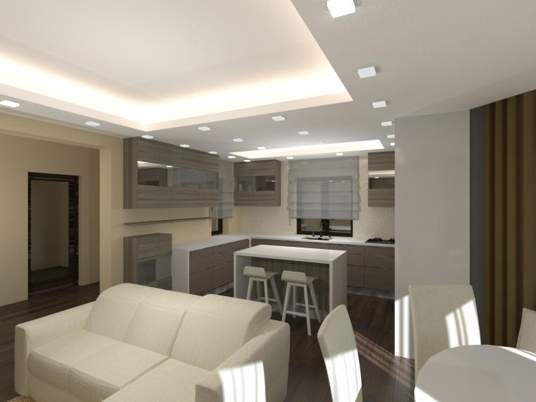 living casa Barsan (8)